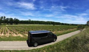 Suntour winetour dans les vignes