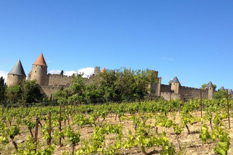 Cité de Carcassonne vignole
